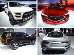 NAIAS 2016: Photo Gallery