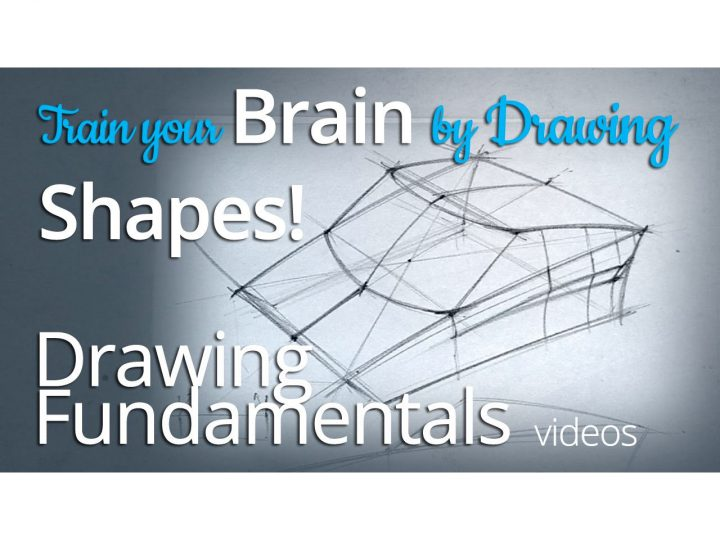 How to draw shapes with sections